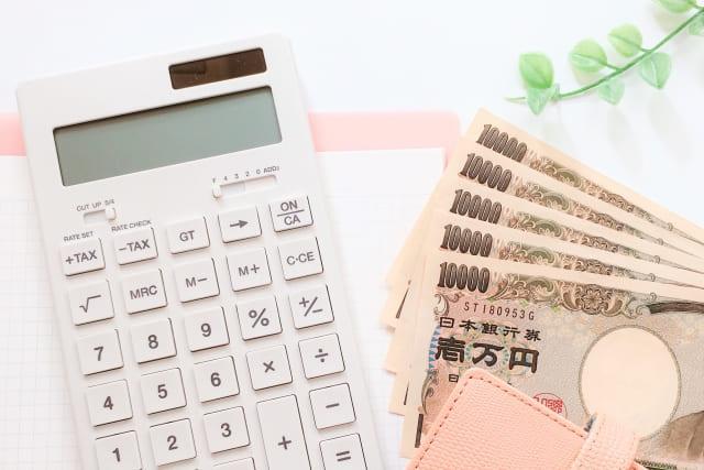 国からお金を借りる制度⑥年金担保貸付