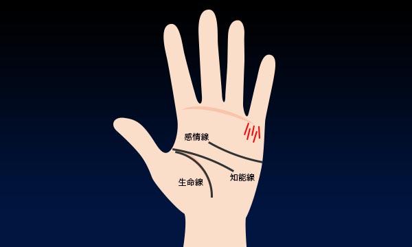 9.小指の付け根に切れ切れの縦線がある